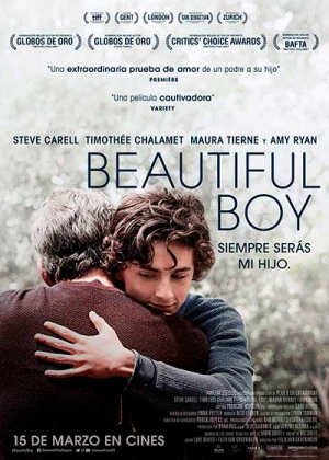 Póster de la película Beautiful Boy